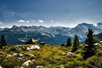Op een Alp, Zwitserland van Manuel Declerck