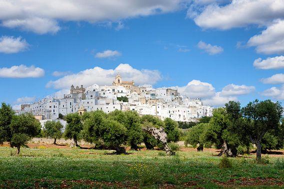 Weiße Stadt Ostuni mit Olivenbäumen in Apulien