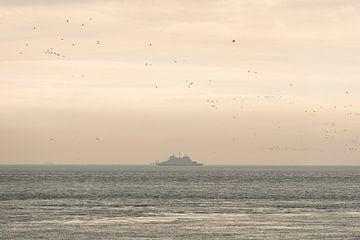 Oude veerboot op de Waddenzee omringt door vogels van Tonko Oosterink