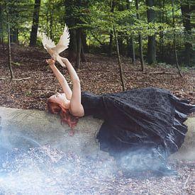 Die Taubenflüsterin von Claudia Evans