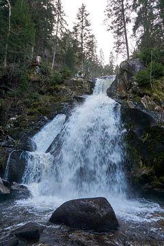 Close-up van de Triberg watervallen van creativcontent