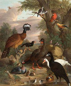 Een verzameling vogels in een park, Jakob Bodány