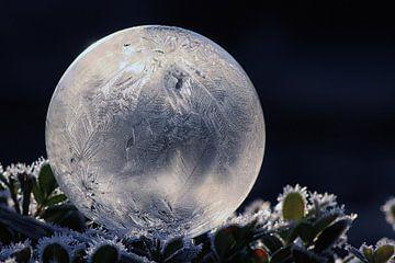 Frozen bubble 02 van Stefanie van Dijk