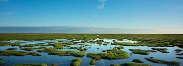 Kwelder landschap van Bo Scheeringa
