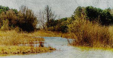 Grunge Landschaft von Irene Lommers