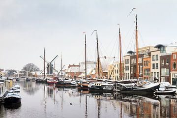 Winters Galgewater Leiden von Dennis van de Water