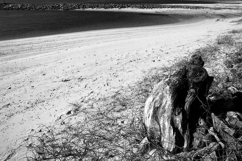 Strand aan de Waal van joas wilzing