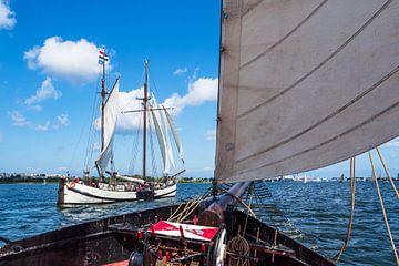 Zeilschepen op de Warnow tijdens de Hanse Sail in Rostock van Rico Ködder