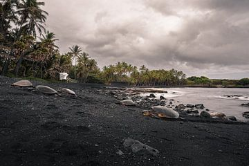 Schwarzer Sandstrand Hawaii von road to aloha