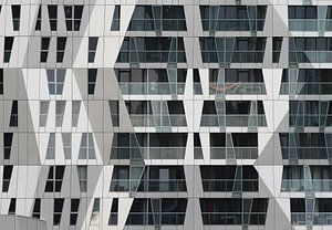 Rotterdam, Calypso