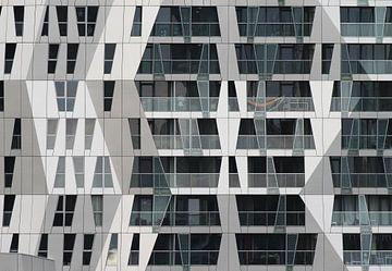 Rotterdam, Calypso von maron branderhorst