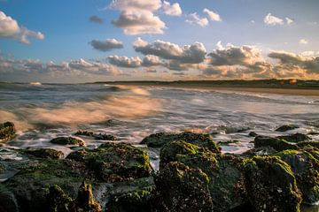 Kustlijn strand Oostkapelle van Robin Hardeman