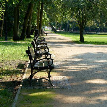 Bancs dans l'idyllique parc Zdrojowy sur Heiko Kueverling