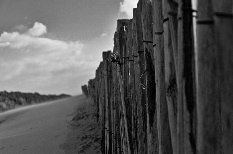 To the beach van Robert Stienstra