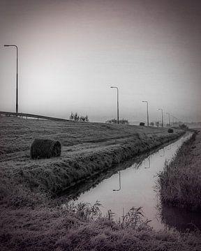 Provinciale weg en sloot, IJsselstein van Tony Buijse
