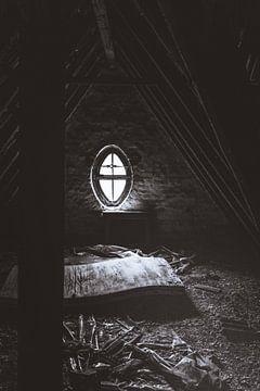 Blair Witch Horror - Dunkle Tage am Baldeneysee im Ruhrgebiet von Jakob Baranowski - Off World Jack