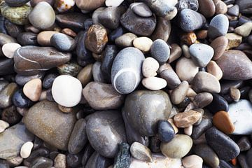 Rocks van