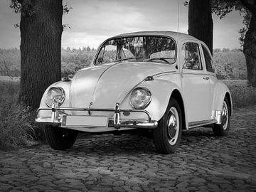 Volkswagen (VW) Kever van
