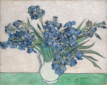 Irises, Vincent van Gogh sur