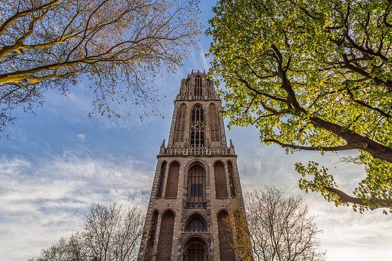 Domtoren Utrecht vanaf het Domplein op een zonnige dag