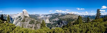 Yosemite NP van