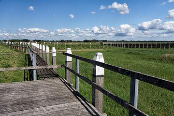 Steigers in een landschap von Rijk van de Kaa