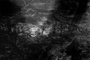 Serie verloren gevoel, beeld 3 van Noortje Zoomers