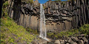 Svartifoss Wasserfall - Nationalpark Skaftafell, Island von Menno Schaefer