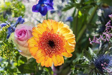 Frühlingsblumen in einem Strauss mit orange-, rosa- und purpurroten Farben von Idema Media