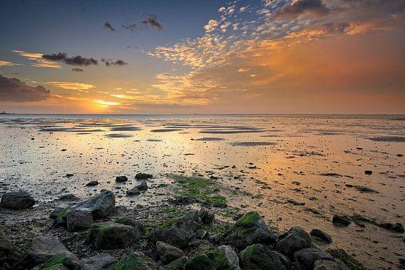 Het wad bij zonsopkomst
