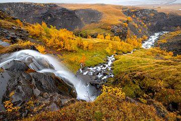 Waterval met rivier op de weg naar Hengifoss, Ijsland van Herman van Heuvelen