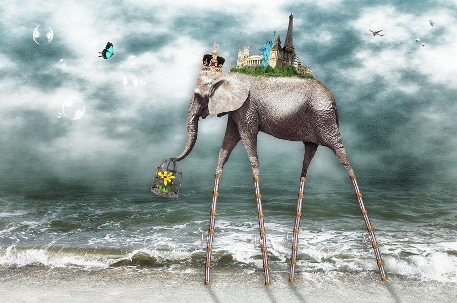 Strandwandeling over de wereld