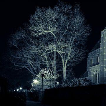 Blauer Baum von Raoul Suermondt