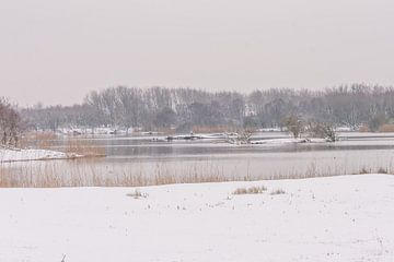 Winters landschap van Carla Eekels