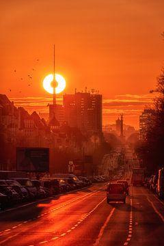 Het oog van Berlijn van Salke Hartung
