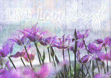 Leef, liefje, lach! van christine b-b müller