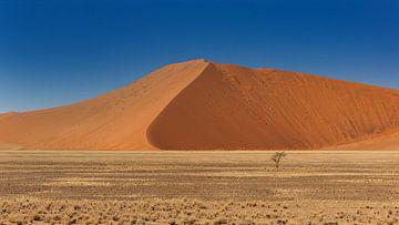 Sossusvlei Namibië (3) van Adelheid Smitt