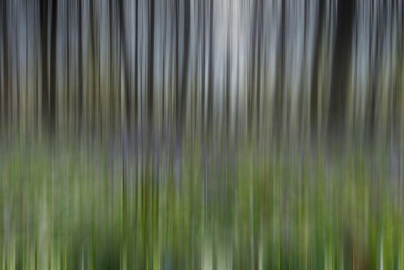 Haller wood abstract sur Menno Schaefer