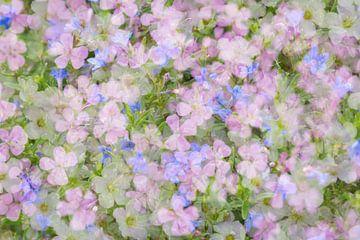 Mix aus Blumen in romantischen Pastellfarben von Lisette Rijkers