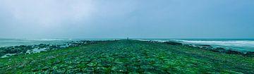de groene weg over het strand van jeroen akkerman