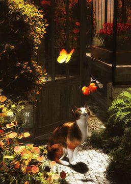 Chats – Un chat romantique aime les papillons