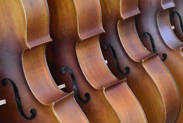 Cello muziek van Susan Dekker