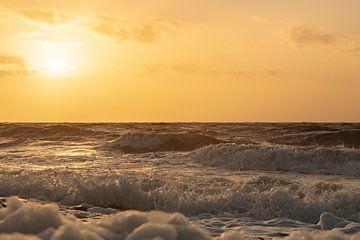 zee bij zoutelande van anne droogsma