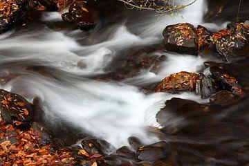 Autumn River van Cornelis (Cees) Cornelissen