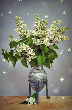 witte lila van Steffen Gierok