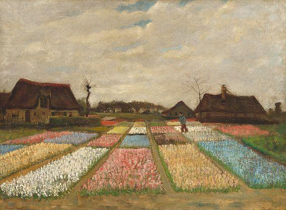 Flower Beds in Holland van Rebel Ontwerp