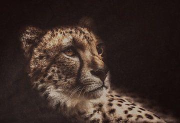 Cheeta ( katachtige ) van Monica Zimmermans
