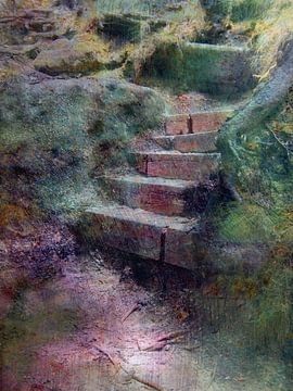 Treppe im Wald von Claudia Gründler