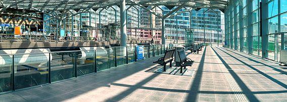 Den Haag station van Ariadna de Raadt