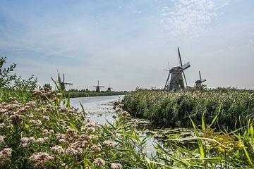 Kinderdijk molens van Hans Tijssen